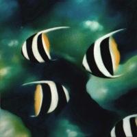 Nature_BannerFishes2_(Wimpelfische2)_50x50_(2002)