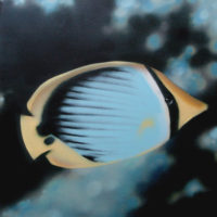 Nature_Butterflyfish_(Falterfisch)_50x50_(2002)