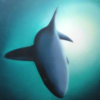 Nature_Shark_(Hai)_50x50_(2002)