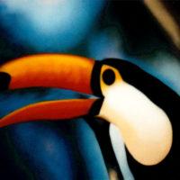 Nature_TocoToucan1_(Riesentukan1)_120x80_(2002)