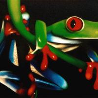 Nature_TreeFrog3_(Baumfrosch3)_70x60_(2002)